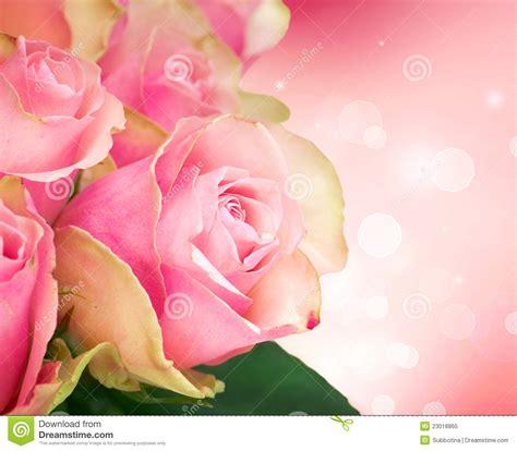 fiore designs flower design stock image image of