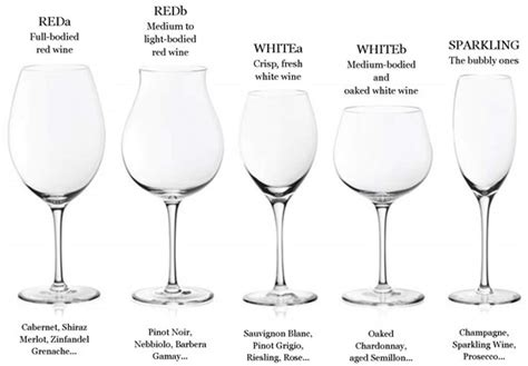 Different Bar Glasses To Speak With A Plumm In Your