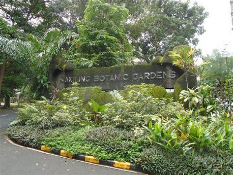 Uplb Botanical Garden Dalit Falls Picture Of Los Banos Laguna Province Tripadvisor