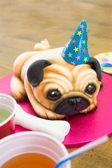 how to make a pug cake pug cake paul bradford sugarcraft school