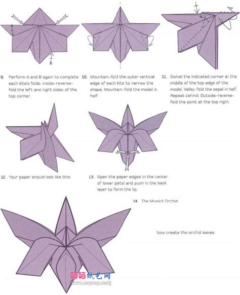 Origami Orchid - origami images with origami orchid diagram