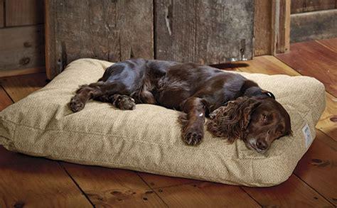 indestructible dog beds top  beds  reviews