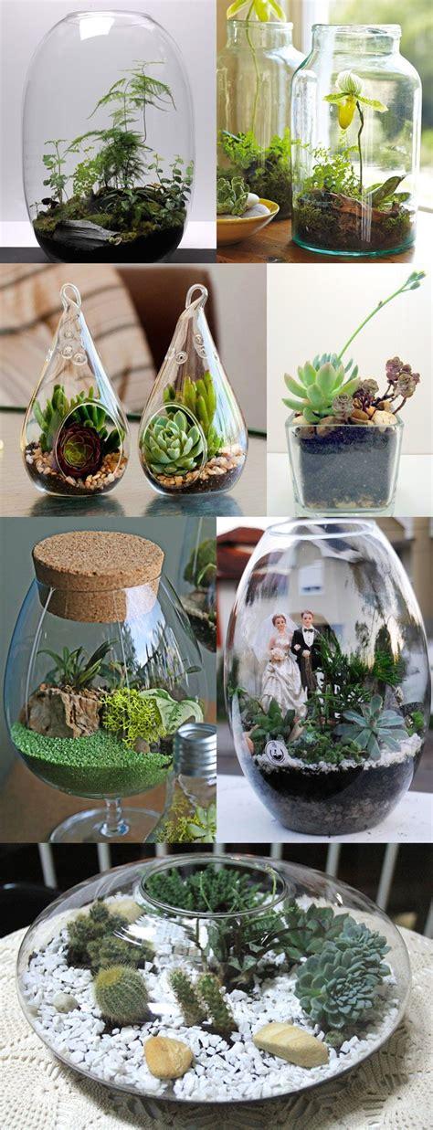 fazer plantas como fazer um terr 225 mini jardins em potes de vidro