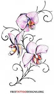Chinese Forget Me Not Flower - orchid february birth flower tattoos pinterest february birth flowers birth flowers and