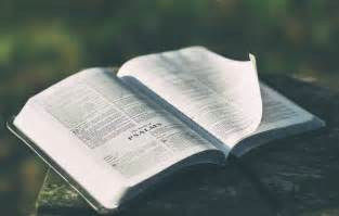 yearly bible reading plans heartlight