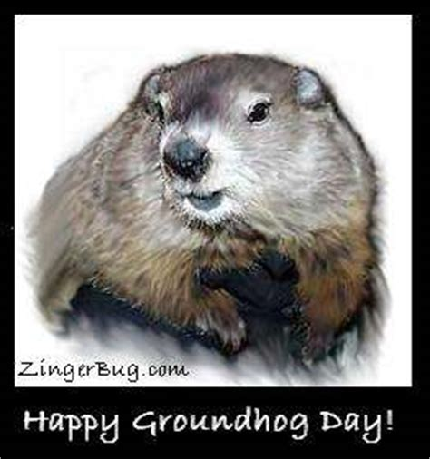 groundhog day slang meaning groundhog painting glitter graphic greeting comment