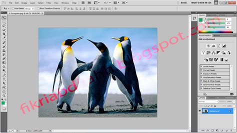adobe photoshop cs5 free download full version blogspot free download adobe photoshop cs5 full version fikrie blog