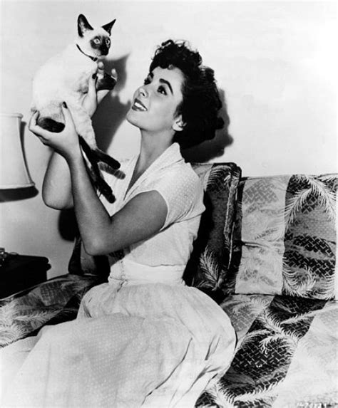actress cat or paris cat celebrities with cats elizabeth taylor kittens and style