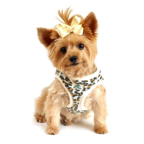 free of with dogs american river choke free harness leopard and minky fur baxterboo