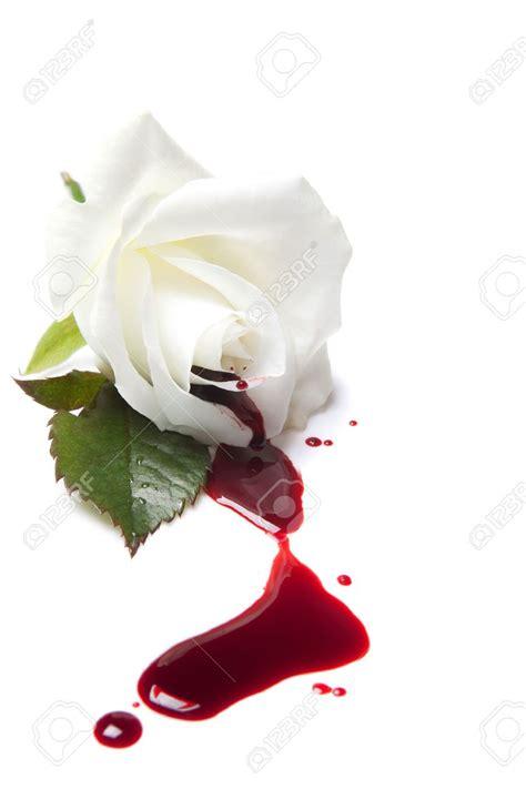 Gamis Roseflowry sad roses pictures bouquet idea