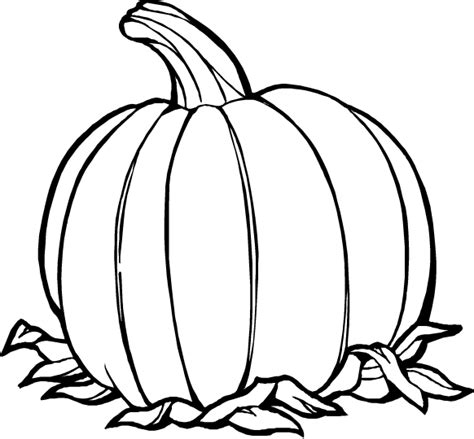 thanksgiving pumpkins coloring pages pumpkins coloring pages to celebrate thanksgiving learn