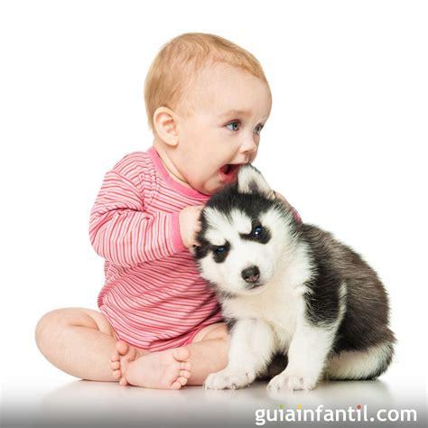 Imagenes De Niños Jugando Con Animales | risa contagiosa de un beb 233 jugando con su perro
