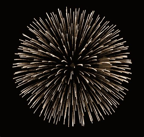 new year fireworks animation cold room page 1545 tortoise forum