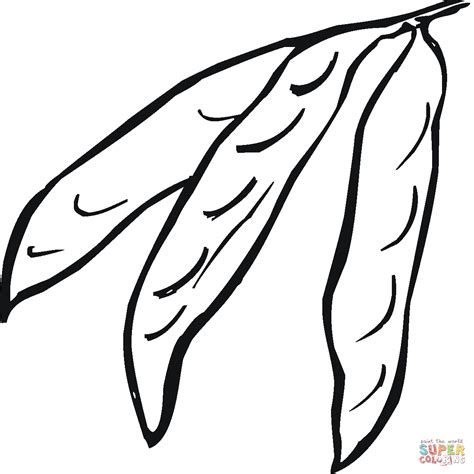 coloring books realm 4 44 grayscale coloring pages of fairies flowers elves butterflies animals warriors females and coloring books for adults volume 4 books green bean coloring page coloring home