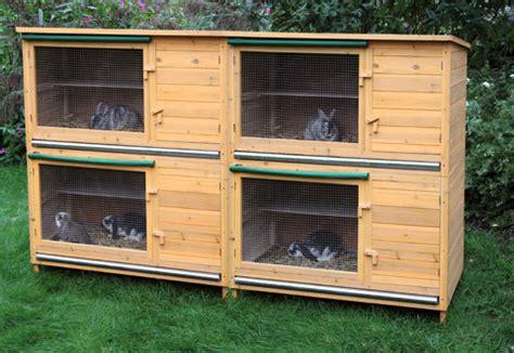 gabbie per conigli in legno fai da te conigliera in legno hutch xl aggiunta animalmarketonline