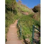 Steps Above Maidencombe Beach &169 Derek Harper  Geograph Britain And