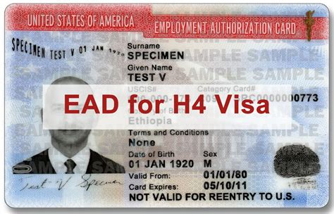 Mba H4 Visa Holders by Employment Authorization For H4 Visa Holders Faqs Usa