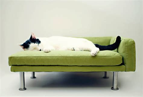 mini modern furniture for your spoiled cat hauspanther