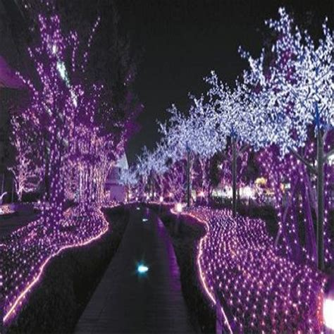 purple christmas lights purple pinterest