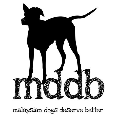 dogs deserve better malaysian dogs deserve better animal shelter in shah alam