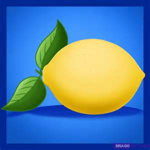 How to draw a lemon step by step food pop culture free online