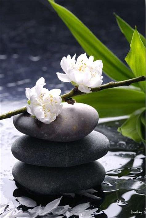 imagenes flores zen les 25 meilleures id 233 es concernant zen sur pinterest