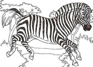 zebra color 45 awesome zebra color page to print or save gianfreda net