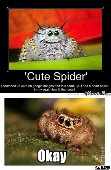 Misunderstood Spider Meme - misunderstood spider meme car www imgkid com the image