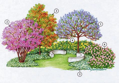 alberi per piccoli giardini alberi per piccoli giardini idea creativa della casa e