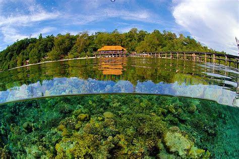walea dive resort walea dive resort ana sulawesi tengah favorite places