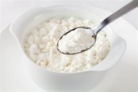 a look at the cottage cheese diet mydiethq