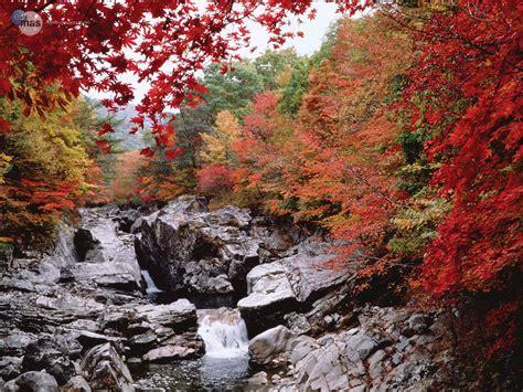 imagenes de paisajes naturales increibles paisajes incre 237 bles de otoo