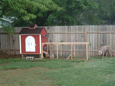 rain barrels chicken coops and solar panels