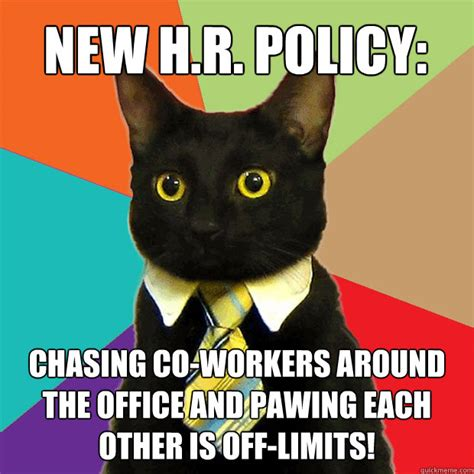 Hr Memes - new h r policy chasing co workers cat meme cat planet