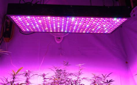 100 watt led grow light gaea 1200 watt full spectrum led grow light