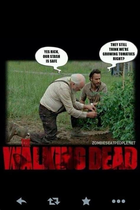 Walking Dead Season 4 Meme - the walking dead memes season 4 the walking dead