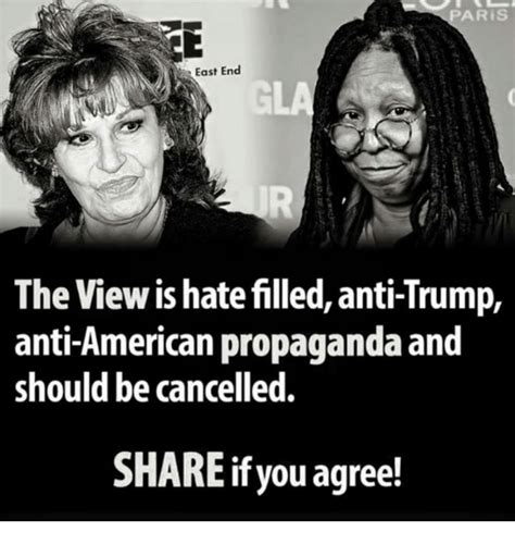 The View Meme - paris east end the view is hate filled anti trump anti