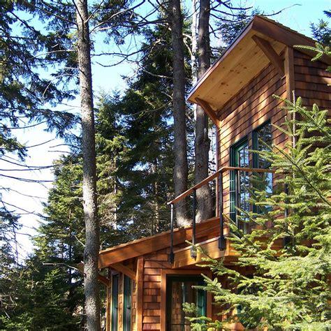 tiny tree house gallery a tiny house in the trees david matero small