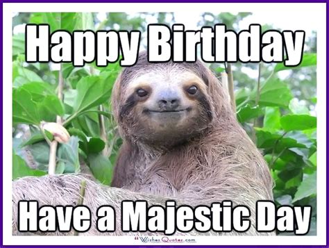 Birthday Animal Meme - funny happy birthday meme animal www imgkid com the