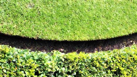 inspirations permaloc edging  nice garden design ideas