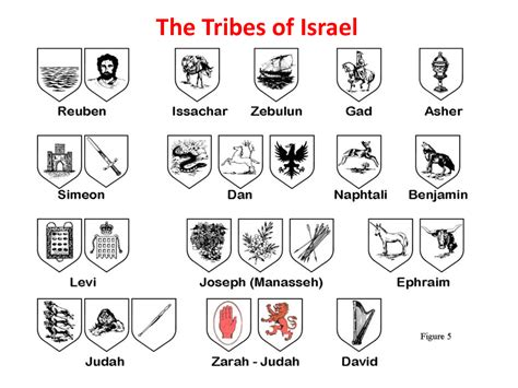 and animal motifs colorful stones applications some designers offer history of the 12 tribes of israel symbol stock image