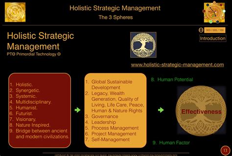 Usf Mba Developing Leadership Skils Description by A Nature Inspired Leadership On Holistic