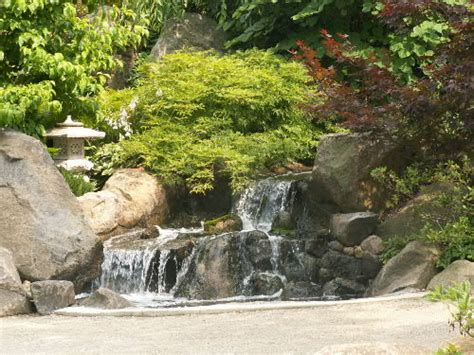Small Backyard Guest House by Anderson Japanese Gardens