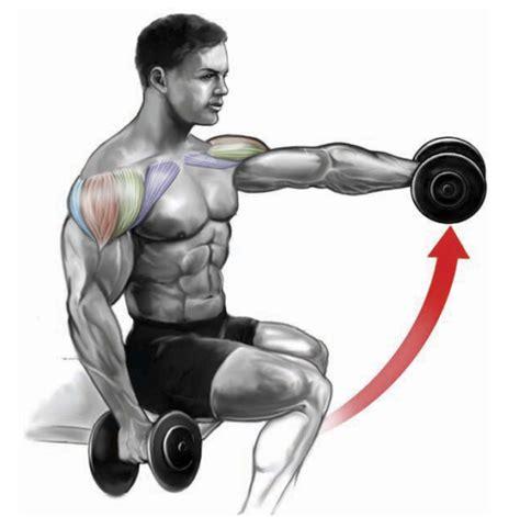 shoulder exercises urbanfitness personal training