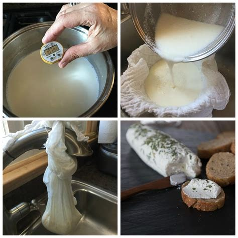 how to make goat cheese recipe ch 232 vre analida s ethnic spoon
