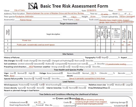 tree assessment report template isa tree risk assessment form honan