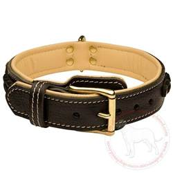 Designer Luxury Dog Accessories - english mastiff breed leather collar decorated designer dog collar handmade wear