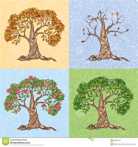 illustration of season trees four seasons tree stock vector illustration of 39869764