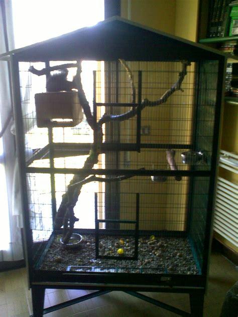 gabbie per scoiattoli come costruire una gabbia per scoiattoli 28 images