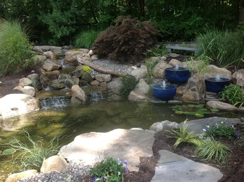 backyard fishing ecosystem fish and koi ponds a frog s dream aquatic services